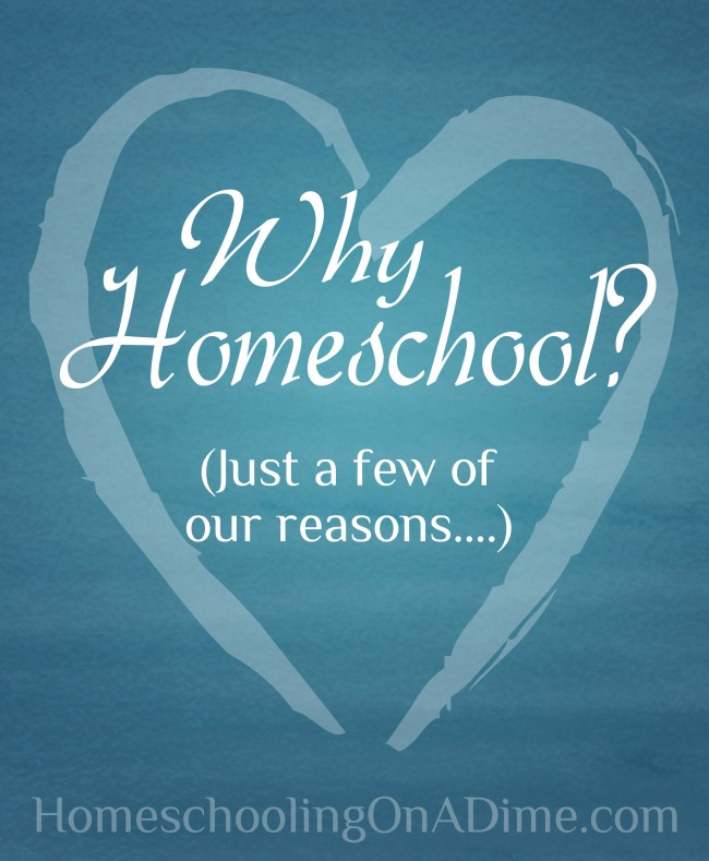 Why Homeschool - Our Reasons for Homeschooling
