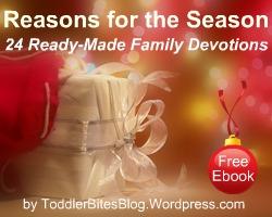 Reasons-for-the-Season-Ebook